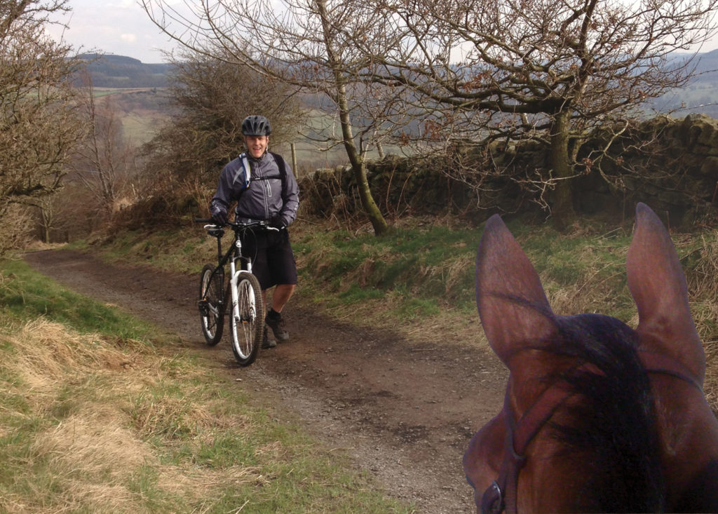 mountain bikers and horses, what to do when meeting a horse on your bike